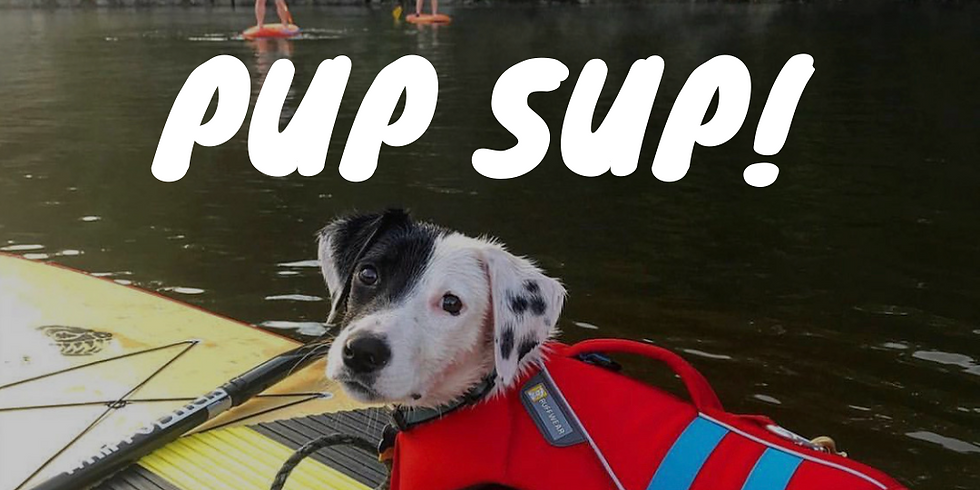 Pup SUP Doggie Paddle and Yappy Hour with B'More SUP and Dogs of Charm City