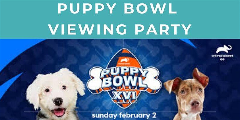 Puppy Bowl Viewing Party