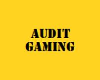 Audit gaming logo 4kant.png