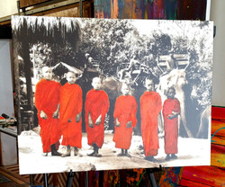Golden Triangle - Monks & Elephants