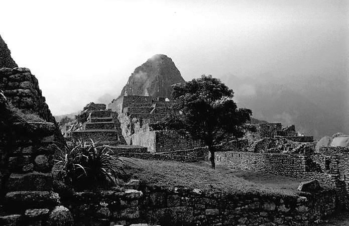 peru - machu pichu citadel (3)