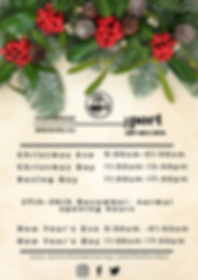 Copy of Xmas opening times.png