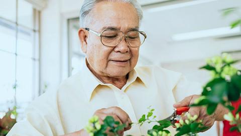Resiliência de idosos em tempo de Covid-19