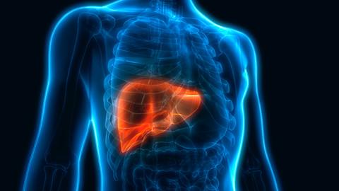 JULHO AMARELO: mês de prevenção e controle das hepatites virais