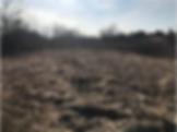 Screen Shot 2019-11-19 at 3.43.41 PM.png