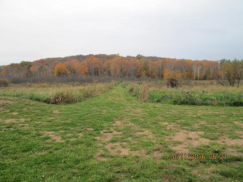 WBH Land Trust Property