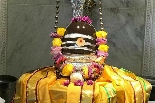 1 Month Shiva Abhishekam on Mondays