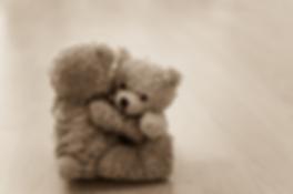 teddy hug.png