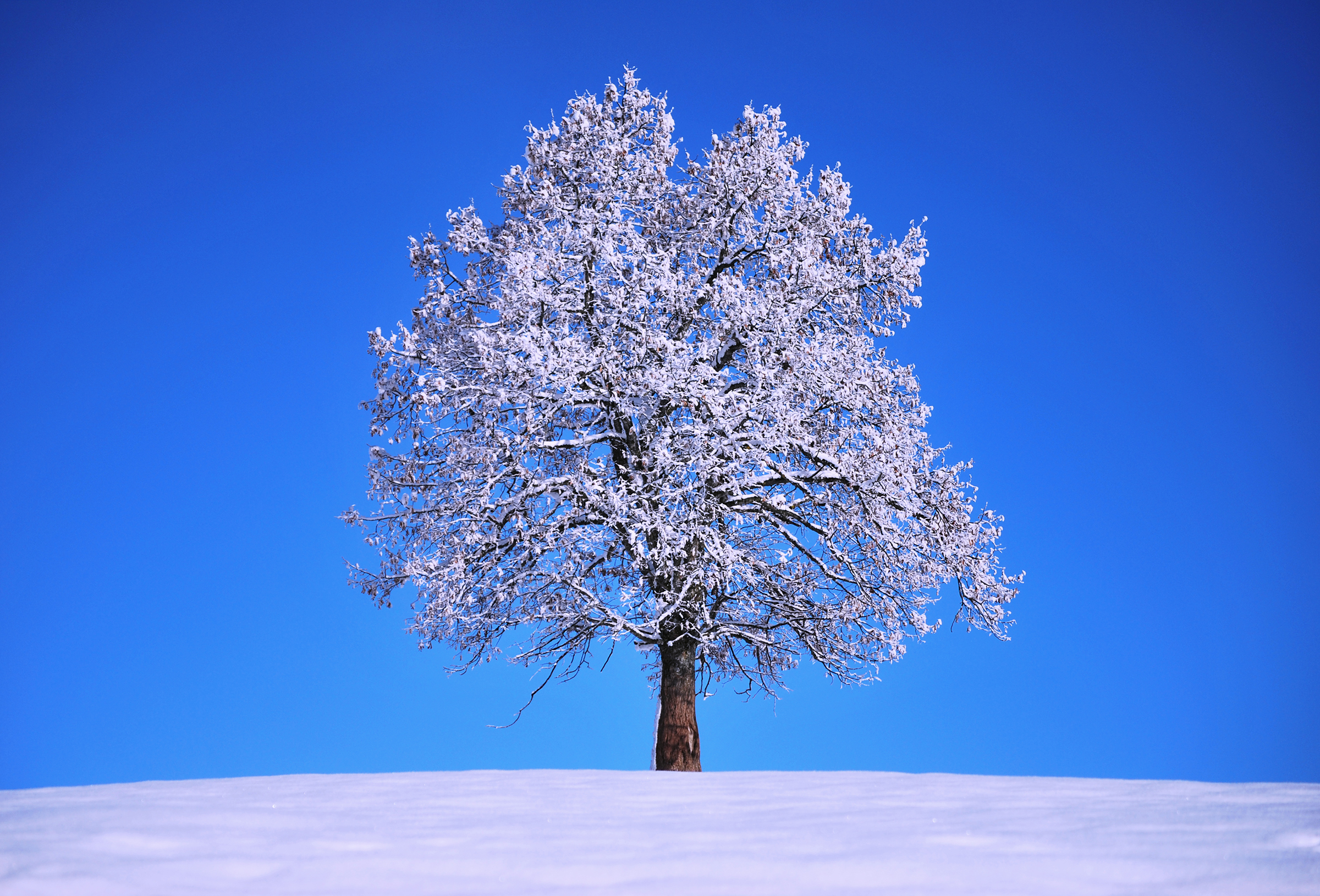 Winter Einsiedeln SZ