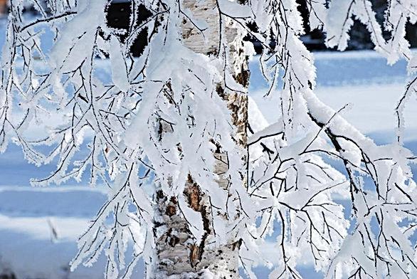 Winter im Davos