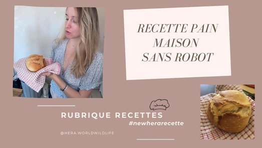 RECETTE DE PAIN MAISON FACILE & RAPIDE SANS ROBOT !