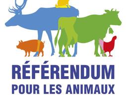 Notre référencement dans le mouvement du Referendum pour les animaux 🐶