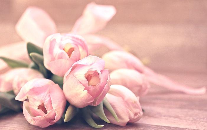tulips-2068688_1280_edited.jpg