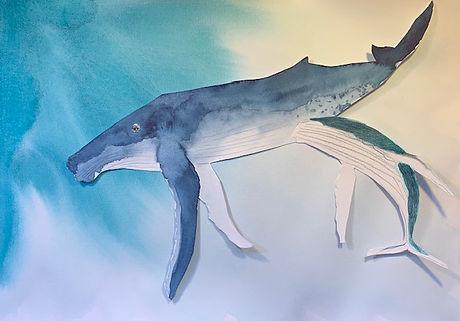wip humpback.jpg