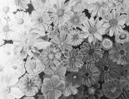 black and white flowers.jpg