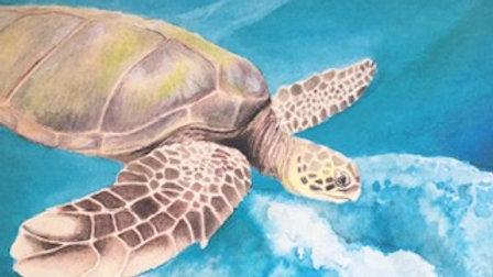 Green turtle card