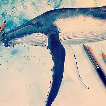 humpback2.jpg