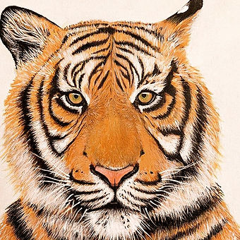 Tiger!%20Commission%20done-%20on%20to%20