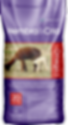 Hembra & Cria for Alpacas & Llamas