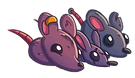 Rats_flipped.png