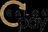 salon-pay-logo-lg-1024x686.png