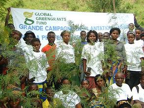 refeades pemba tree plantation.JPG