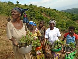 refeades Kilingi and Kibili forests protection campaign Africa black women planting trees DRC Congo Makobola