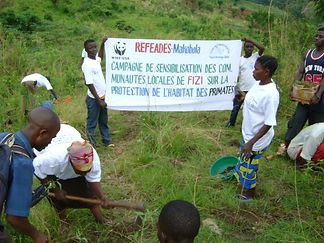 awareness raising campaign of refeades on primates habitat protection Fizi DRC