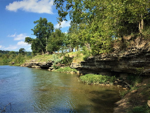 200 Acres Preserved in the Illinois River Watershed