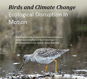 audubon-report-e1496846942258.png