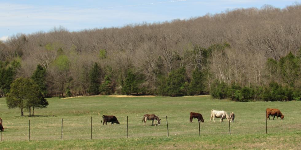 Conservation Easement Workshop - Huntsville