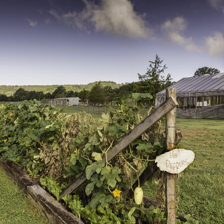 Northwest Arkansas Land Trust Expands Farmland Preservation Program