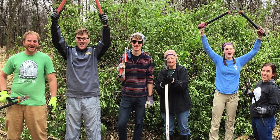 Invasive Removal at Wilson Springs 4/3