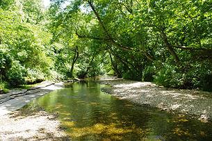 Flint Creek.jpg