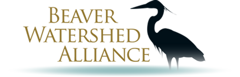 Beaver Watershed Alliance