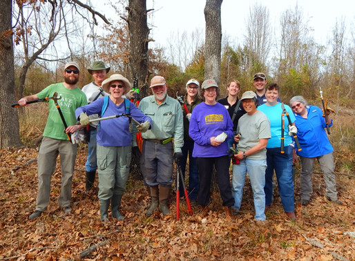 Volunteer at Wilson Springs