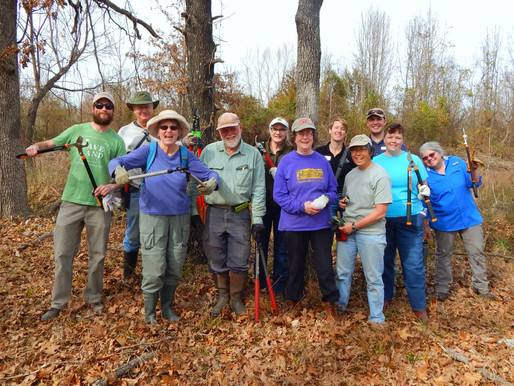 Volunteer at Wilson Springs