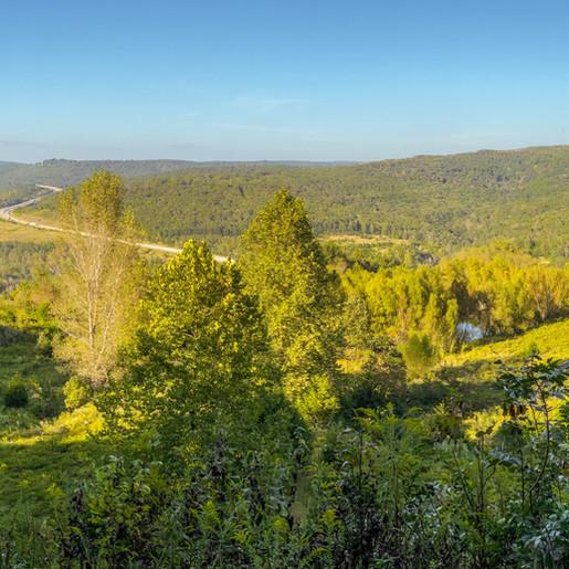 Scenic Gateway to Northwest Arkansas Conserved
