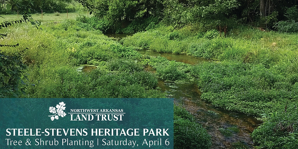 Steele-Stevens Heritage Park Planting
