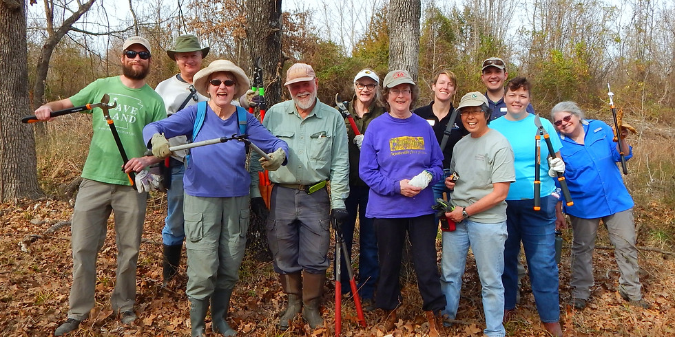 Invasive Removal at Wilson Springs 7/30/21