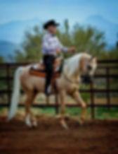 Giaakobbe. Azabache Arabians. Arabian Horse Breeders and Arabian foals for sale in Texas