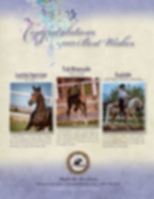 Azabache Arabians