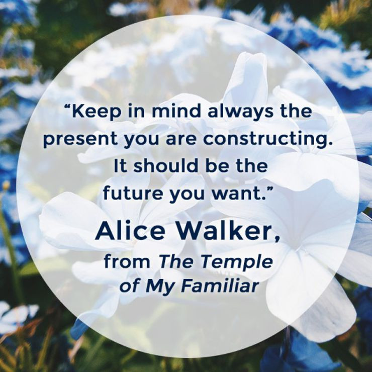 Image result for quotes from alice walker the temple of my familiar