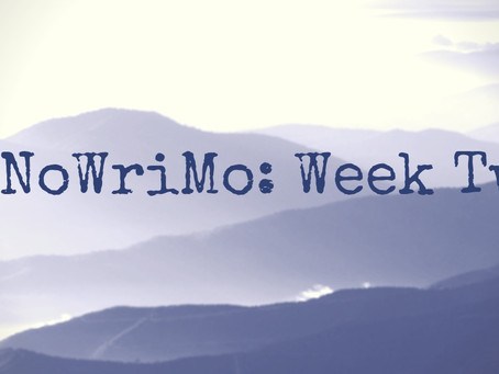 Surviving the Murky Middle of NaNoWriMo