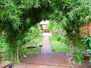 bumboo tunnel