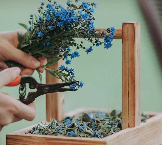 Ecologisch duurzaam trouwen - bloemen planten green confetti