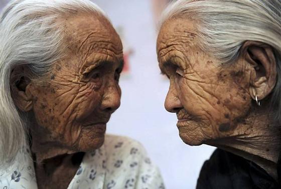 """[論文新知] 健康始於腸:""""健康""""的百歲人端和健康的30歲壯年人有著極度相似的的腸道菌相"""