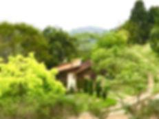 Vista terracota.jpg