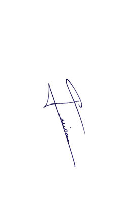 Signature NG bleu.png