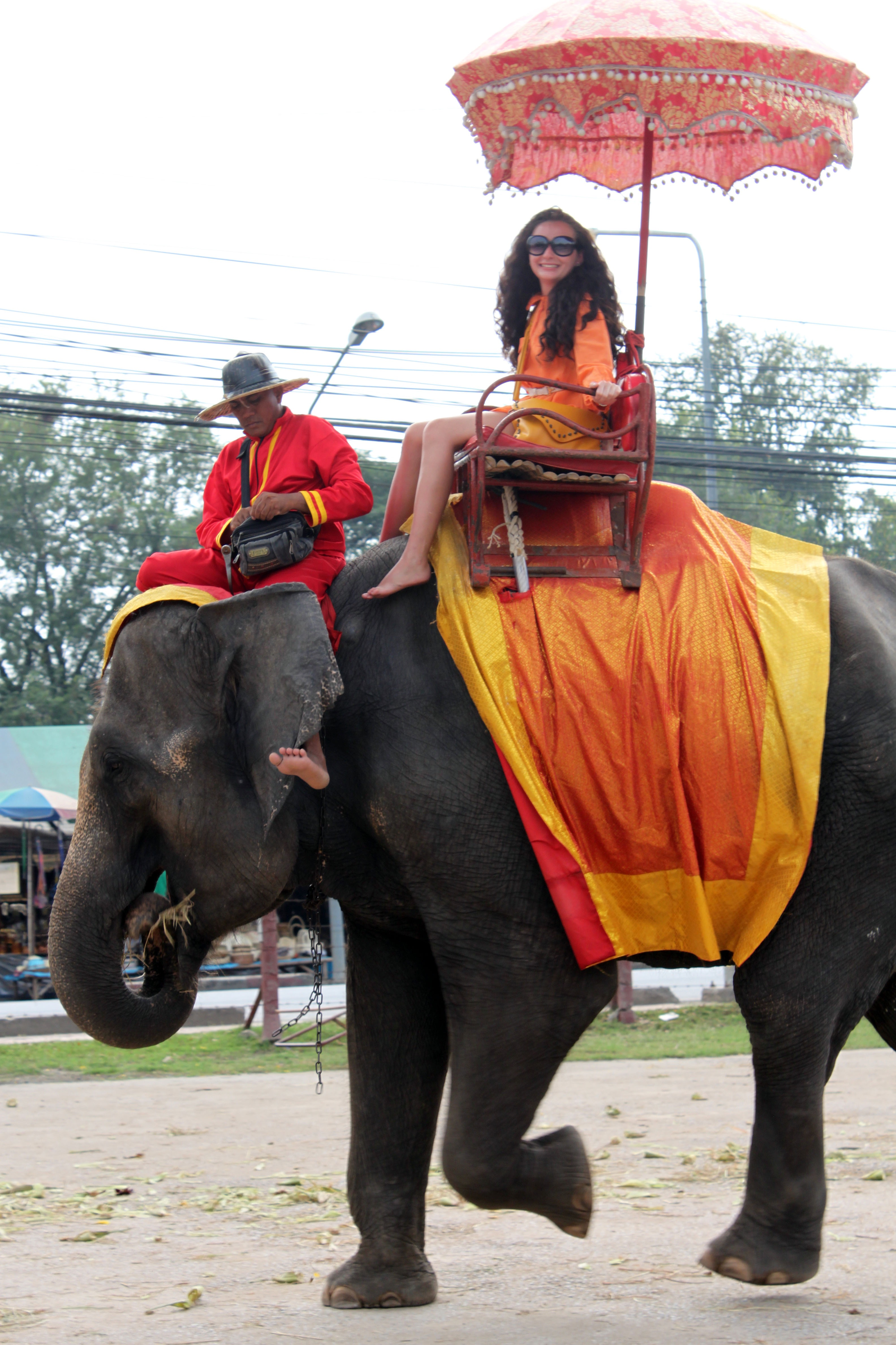 Thai (26)